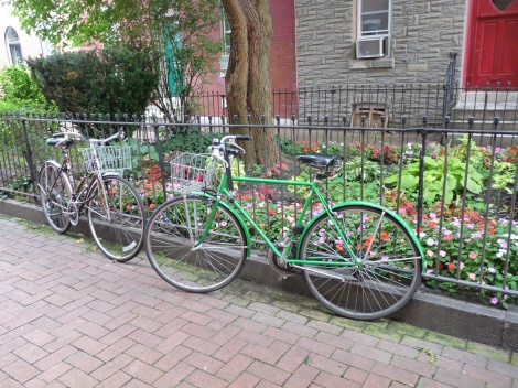 Our bikes on Madison Square